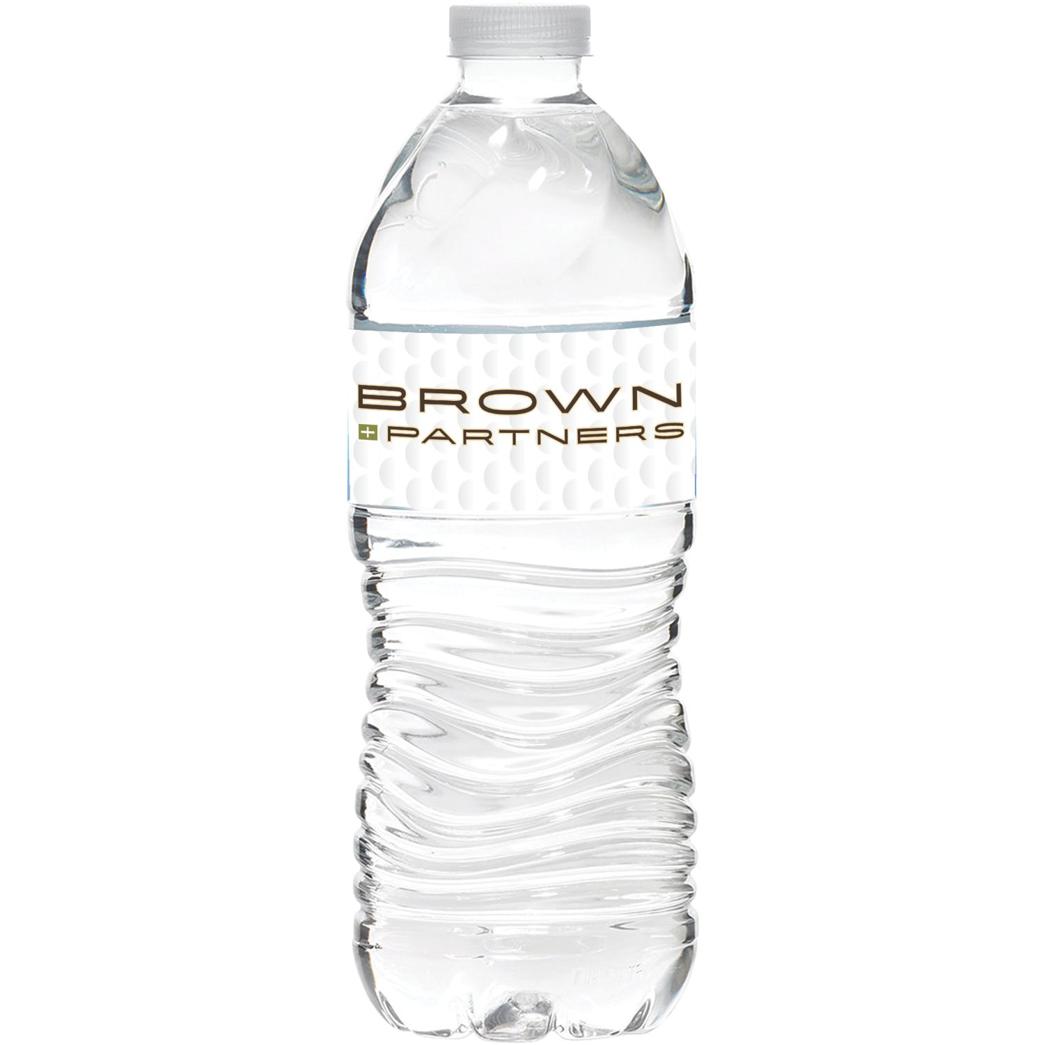 16.9 Oz. Bottled Water